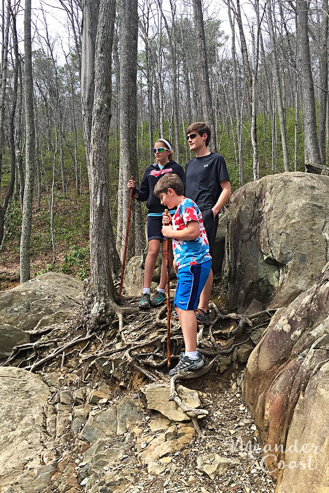 Tips for hiking the Laurel Falls Trail with teens. Smoky Mountains National Park. | Meander & Coast