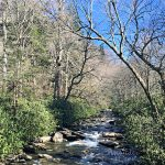 Smoky Mountains Vacation after the Chimney Tops Fire