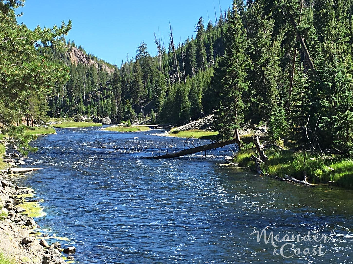 There's even a swimming hole! Hidden Gem--Firehole River Drive in Yellowstone National Park. | Best things to see in Yellowstone National Park that aren't Old Faithful. Meander & Coast #yellowstone #nationalpark #yellowstoneattractions #thingstosee #wyoming #Firehole