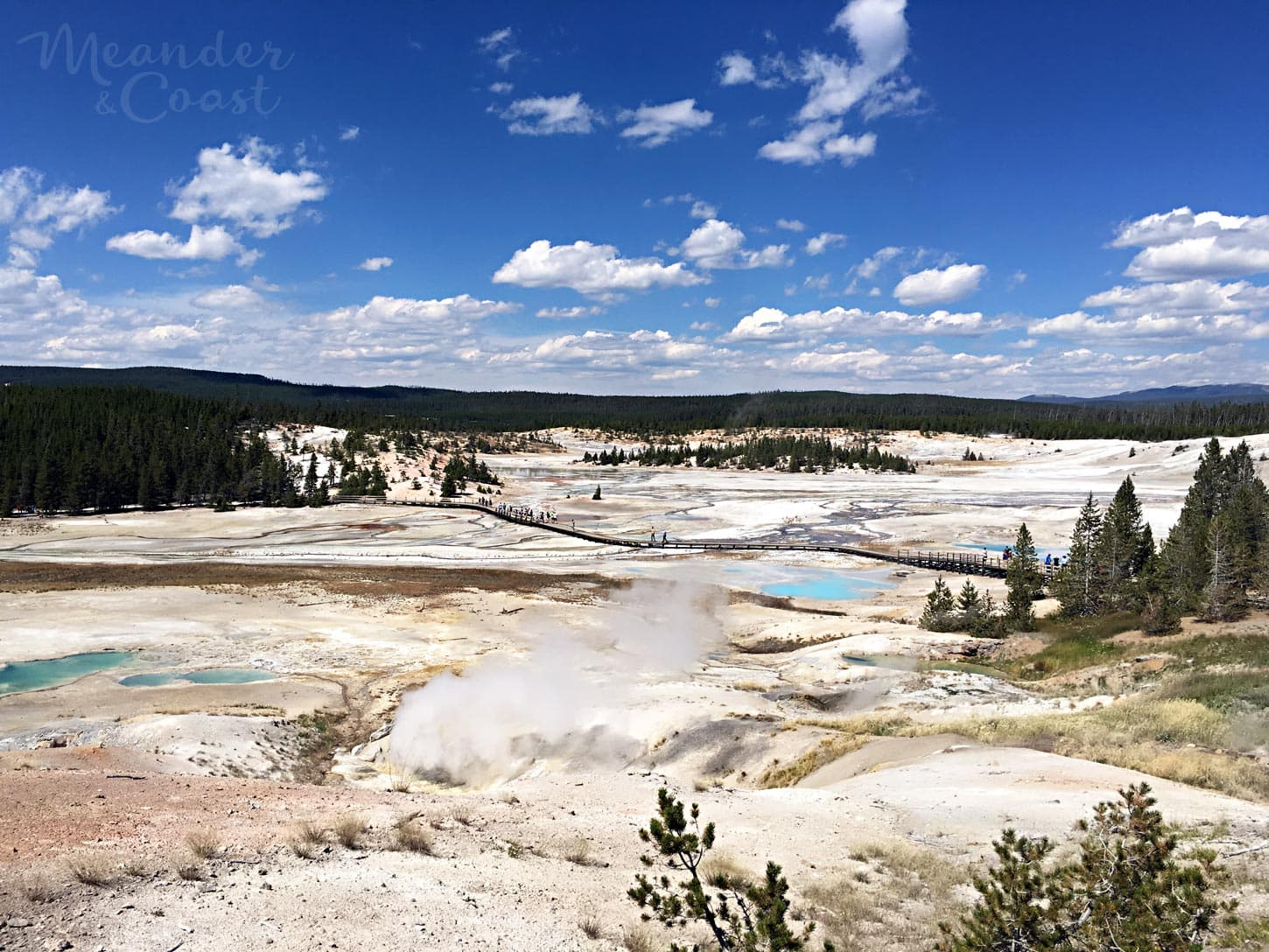 Norris Geyser Basin is home of hundreds of geysers, steam vents, mud pots, and the tallest geyser. | What to see in Yellowstone National Park that isn't Old Faithful. Meander & Coast #yellowstone #nationalpark #yellowstoneattractions #thingstosee #wyoming #norrisgeyserbasin