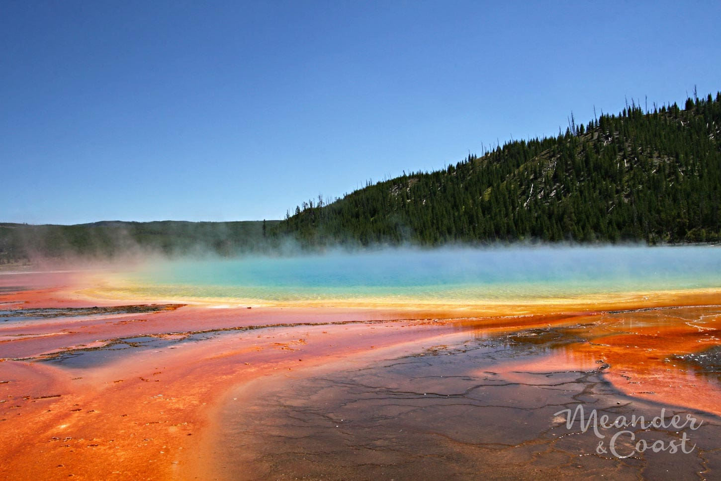 I must see this in person! Stunning color at Grand Prismatic Springs in Yellowstone National Park. | Best Yellowstone National Park Attractions that aren't Old Faithful. Meander & Coast #yellowstone #nationalpark #yellowstoneattractions #thingstosee #wyoming #grandprismatic